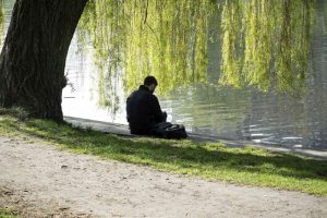 Someone reading under a willow tree.