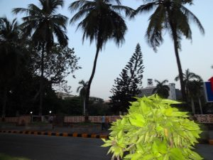 Ominously empty streets in Mumbai.