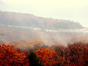Mist-wrapped mountains covered in fall foliage
